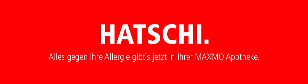 maxmo_slide_hatschi02