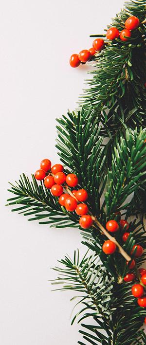 MAXMO Apotheke Weihnachtsgeschenke
